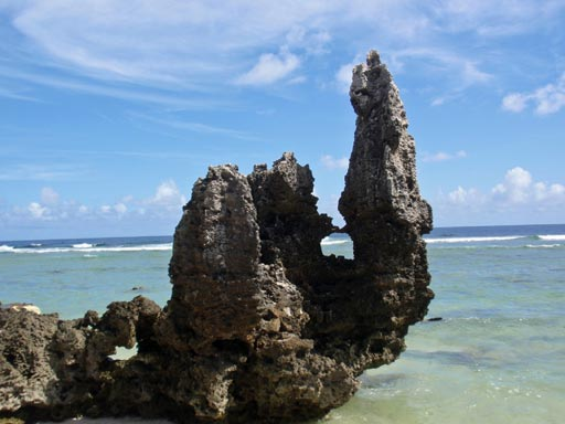 Stone beach pinnacles in the South Pacific