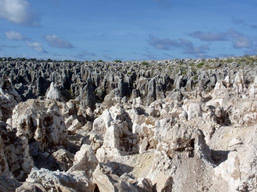 Stone pinnacles following phosphate mining and before rehabilitation